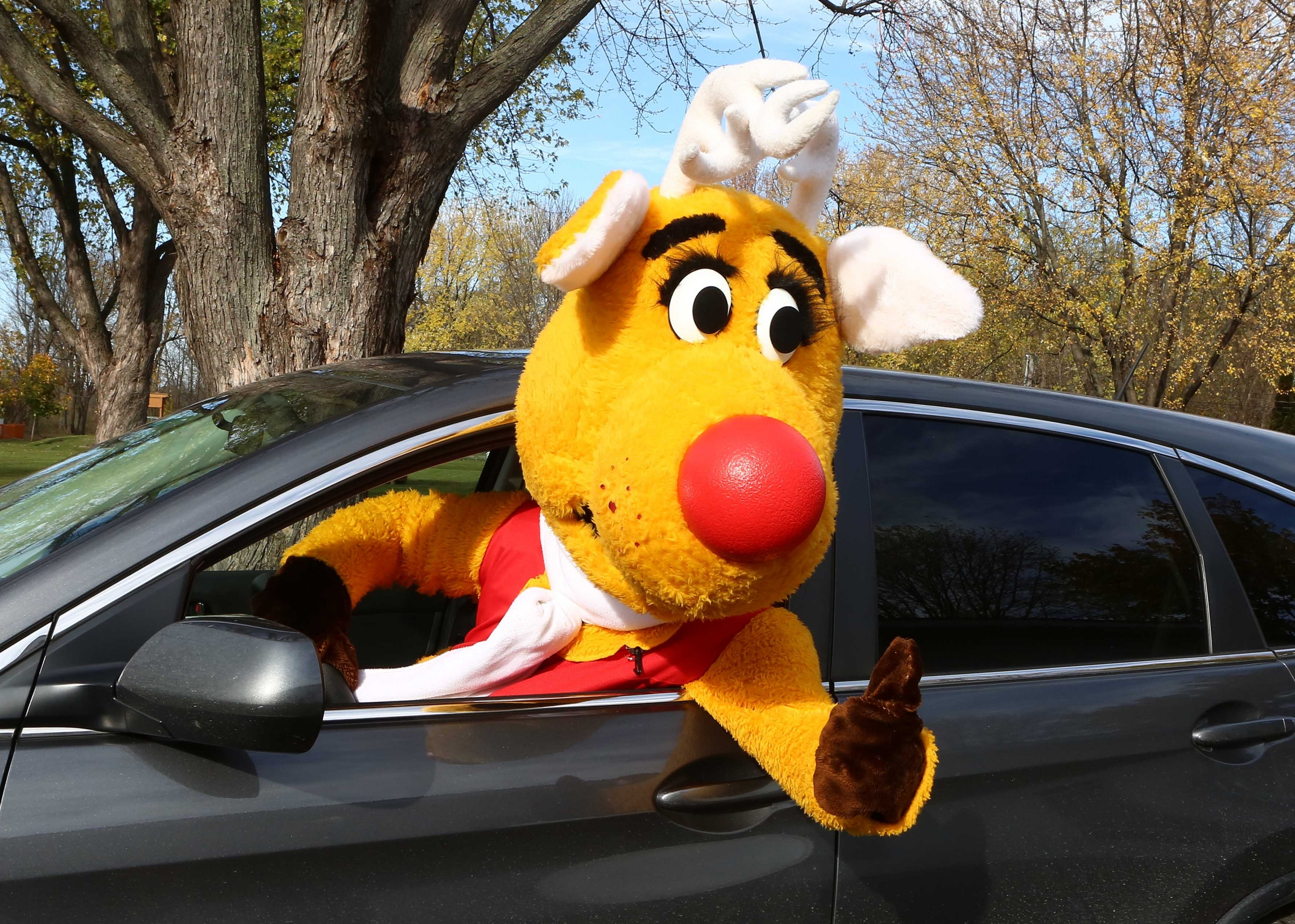 The Courrier du Sud    Operation Red Nose Longueuil-Rive-Sud returns to the road in 2021